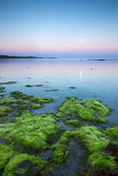 Por do sol sobre o litoral Fotos de Stock