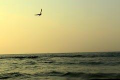 Por do sol sobre o mar Báltico Fotografia de Stock Royalty Free