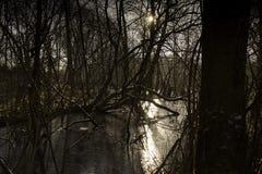 Por do sol sobre o pântano congelado fotografia de stock royalty free