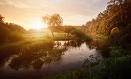 Por do sol sobre o rio no por do sol dramático brilhante bonito da floresta sobre o rio com a floresta ao longo do beira-rio foto de stock