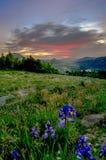 Por do sol sobre o vale após o dia ventoso imagem de stock royalty free