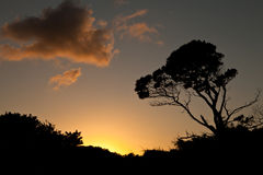 Por do sol sobre a praia Imagens de Stock Royalty Free