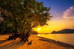 Por do sol sobre a praia da ilha na província de Krabi, Tailândia de Ko Hong imagem de stock royalty free