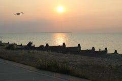 Por do sol sobre a praia de Whitstable foto de stock royalty free