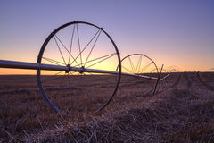 Por do sol sobre um campo de exploração agrícola. Imagens de Stock Royalty Free