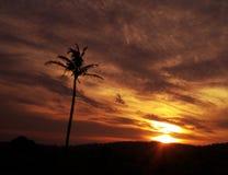 Por do sol surpreendente Imagens de Stock