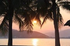 Por do sol surpreendente sobre o mar cercado por palmeiras imagem de stock royalty free