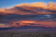 Por do sol tormentoso do deserto Fotografia de Stock