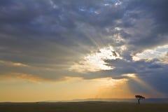 Por do sol tormentoso no Mara Imagens de Stock