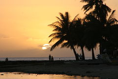 Por do sol tropical Imagens de Stock Royalty Free