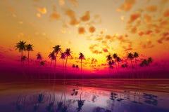 Por do sol tropical ilustração stock