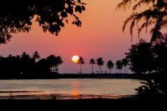 Por do sol tropical Fotografia de Stock Royalty Free