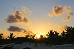 Por do sol tropical Foto de Stock