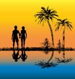 Por do sol tropical ilustração royalty free