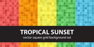 Por do sol tropical ajustado do teste padrão quadrado Backgro sem emenda da telha do vetor ilustração stock