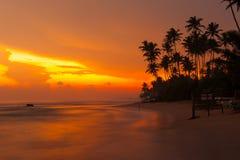Por do sol tropical bonito foto de stock royalty free