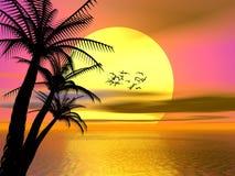 Por do sol tropical colorido, nascer do sol ilustração royalty free