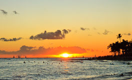 Por do sol tropical do console, Oahu Havaí Fotografia de Stock Royalty Free