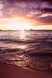 Por do sol tropical dramático imagens de stock