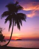 Por do sol tropical em Tailândia Foto de Stock