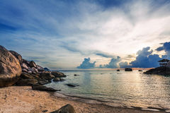 Por do sol tropical sombrio Foto de Stock Royalty Free