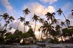 Por do sol tropico em Zanzibar imagem de stock royalty free
