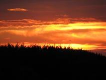 Por do sol vermelho foto de stock royalty free