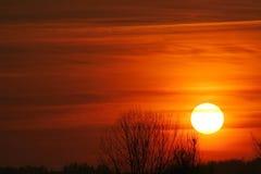 Por do sol vermelho Fotografia de Stock