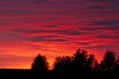Por do sol vermelho imagens de stock