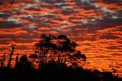 Por do sol vermelho/alaranjado Fotografia de Stock