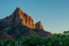 Por do sol vermelho no verde de Zion National Park e em cores alaranjadas com c?u azul fotografia de stock royalty free