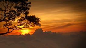 Por do sol vibrante Imagens de Stock