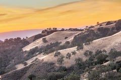 Por do sol vibrante de Califórnia Rolling Hills Foto de Stock Royalty Free