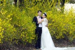 Por el jazmín de oro florece, una foto de la boda del tiro de los pares Foto de archivo libre de regalías