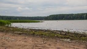 Por el lago Foto de archivo libre de regalías