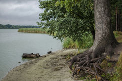 Por el río Fotos de archivo libres de regalías