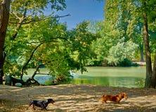 Por el río Imagen de archivo libre de regalías
