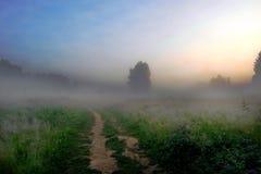 Por la mañana en una senda para peatones Fotos de archivo libres de regalías