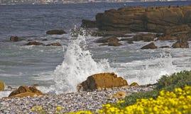 Por la playa Foto de archivo libre de regalías