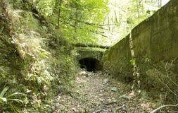 Por naturaleza puente viejo reclamado Foto de archivo libre de regalías