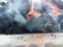 Por que é mau queimar o carvão? imagem de stock