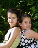 Por siempre amigos Foto de archivo