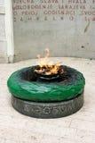 Por siempre fuego Imagen de archivo libre de regalías