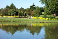 Por terra arboreto do parque e jardins botânicos Foto de Stock Royalty Free
