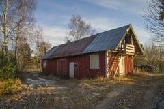 Por um bosque no hov halden dentro Fotografia de Stock