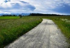 Por un camino del campo a un bosque próximo Imagenes de archivo