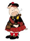 Porc écossais avec la pipe. Image libre de droits