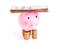 Porc avec de l'argent Photographie stock libre de droits