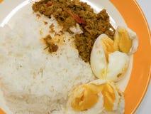 porc avec la pâte jaune de cari avec du riz Photos stock