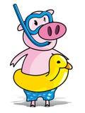 Porc baigné Photographie stock